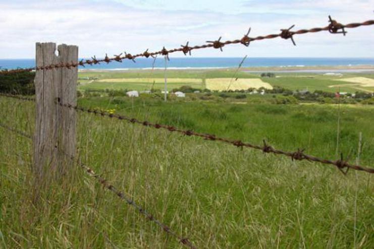 Забор из колючей проволоки 55