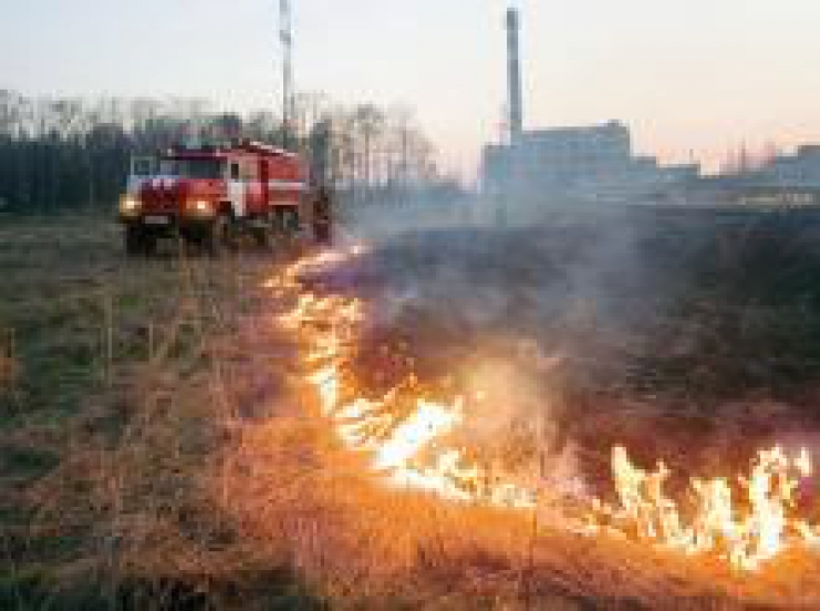 торфяник горит