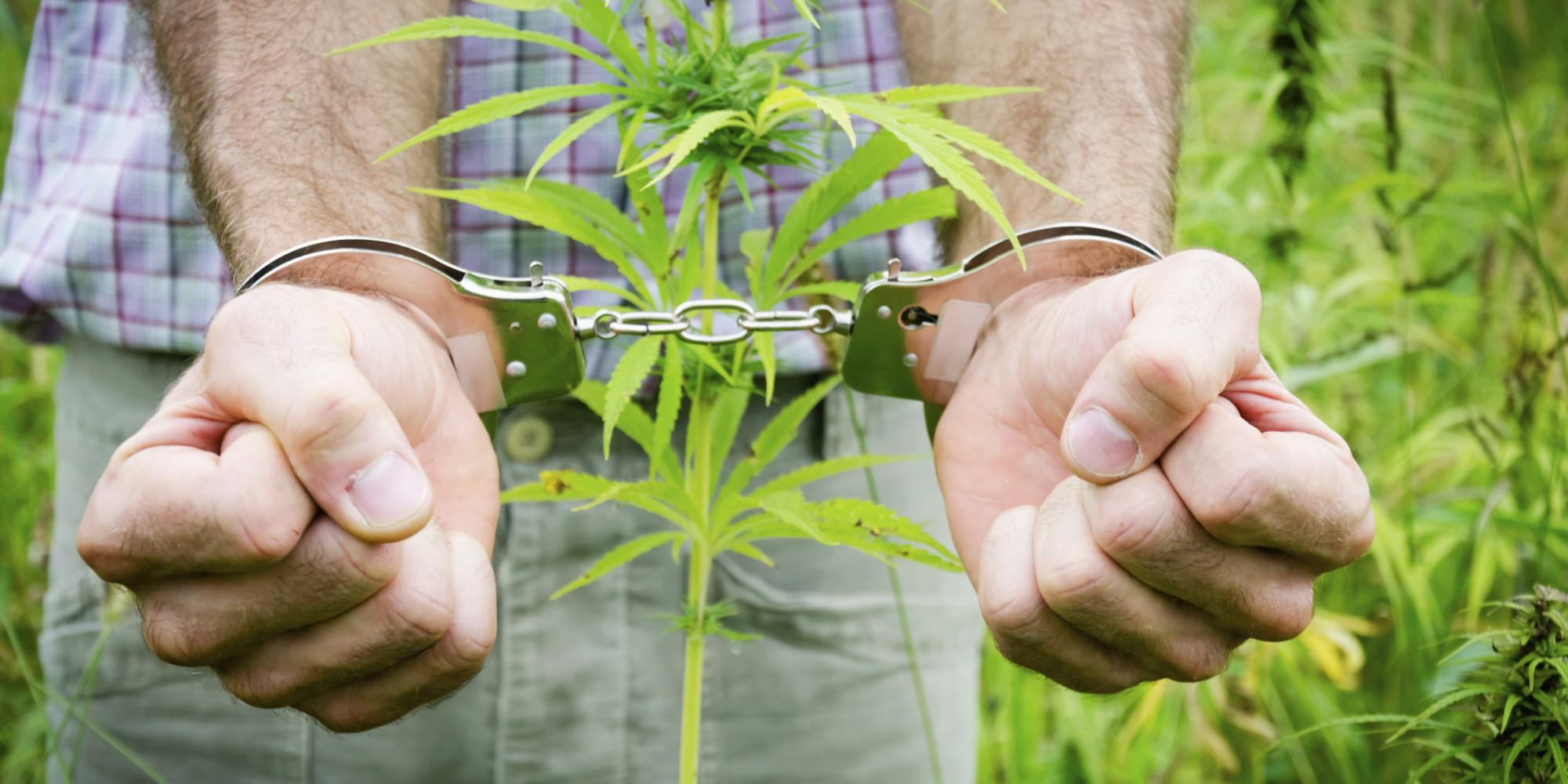 Man in handcuffs - drug crime