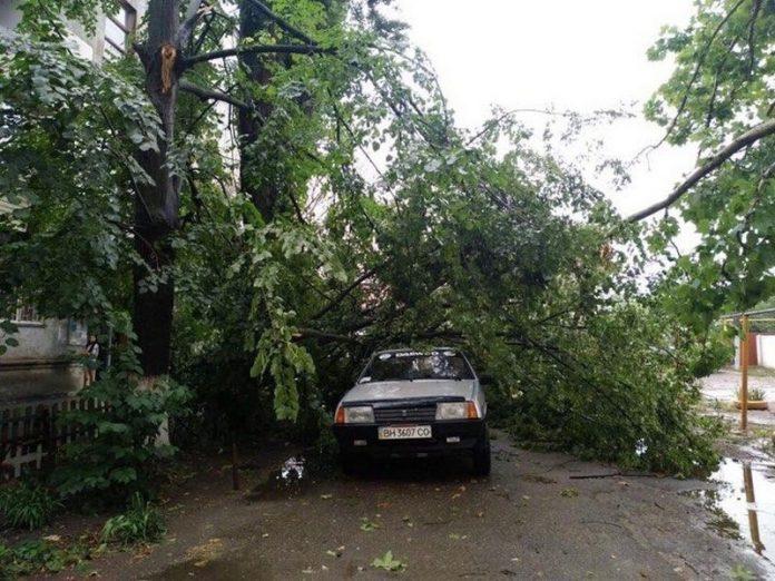 В результате непогоды свыше 200 населенных пункта Украины остались обесточенными