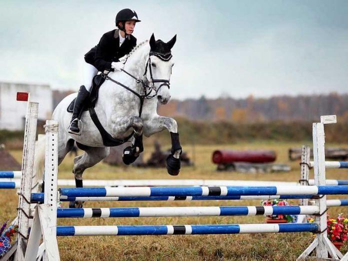 В Донецке состоялся чемпионат по конному спорту