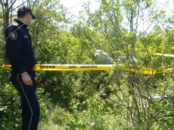 В Никольском четверо мужчин закопали в лесу тело погибшего товарища